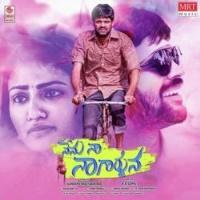 Nenu Naa Nagarjuna movie poster