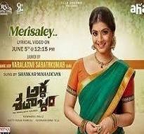 Merisaley poster